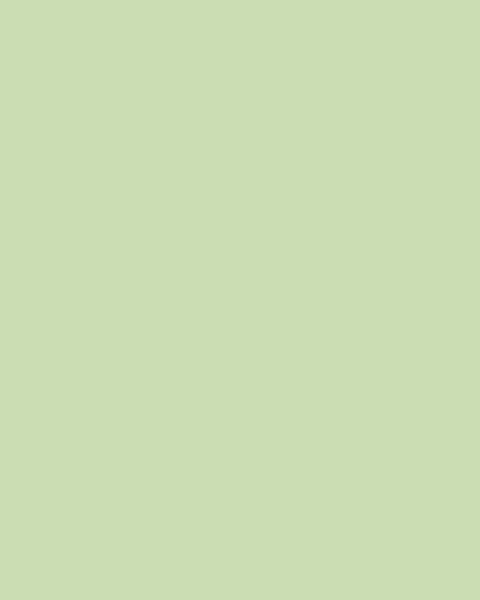 BAUMIT Silikonová omítka Baumit Startop 2,0 mm 25 kg – odstín 1066