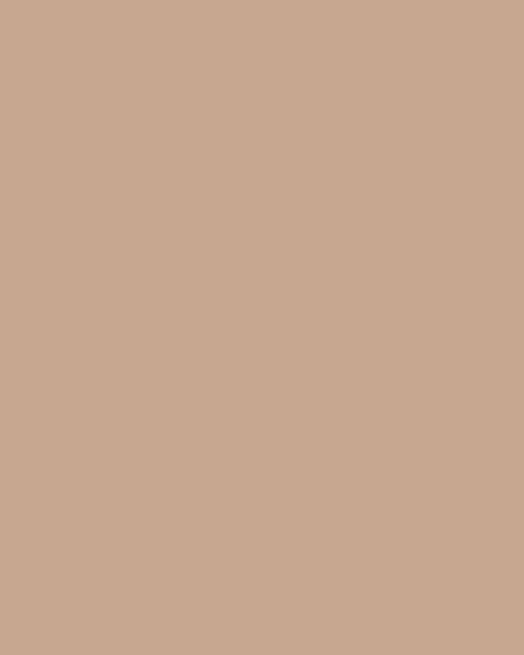 BAUMIT Silikonová omítka Baumit Startop 3,0 mm 25 kg – odstín 0365