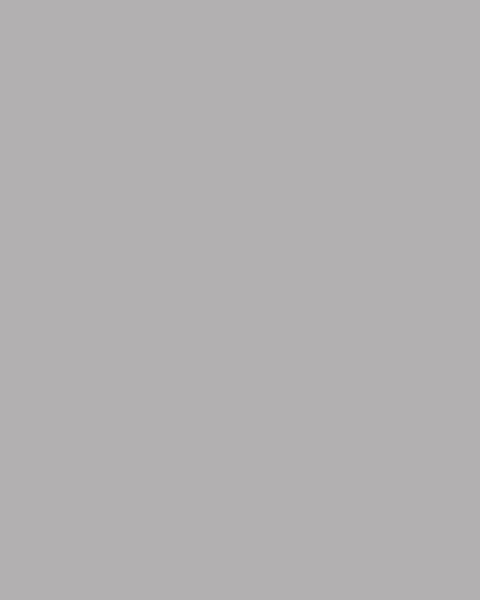BAUMIT Akrylová omítka Baumit Puratop 1,5 mm 25 kg – odstín 0906
