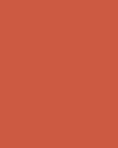 BAUMIT Akrylová omítka Baumit Puratop 2,0 mm 25 kg – odstín 0501