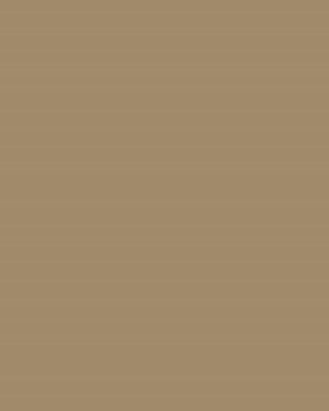 BAUMIT Akrylová omítka Baumit Puratop 3,0 mm 25 kg – odstín 0183