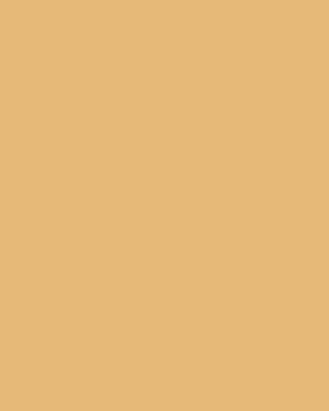 BAUMIT Akrylová omítka Baumit Puratop 3,0 mm 25 kg – odstín 0224