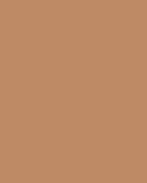 BAUMIT Akrylová omítka Baumit Puratop 3,0 mm 25 kg – odstín 0333
