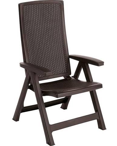 Židle Montreal 2 ks hnědá
