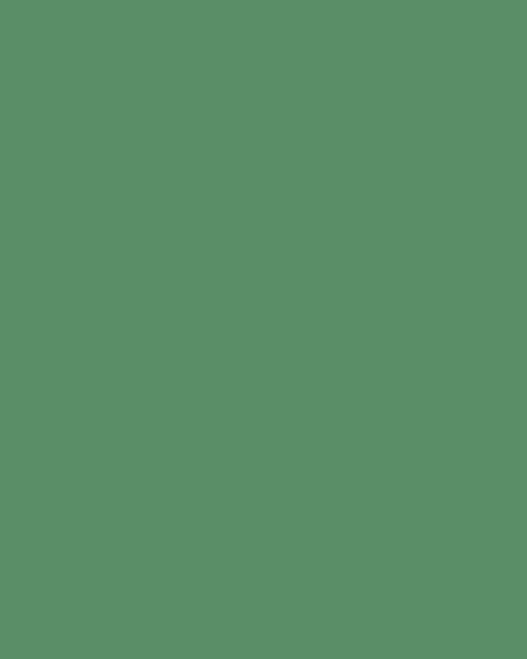 BAUMIT Akrylová omítka Baumit Puratop 2,0 mm 25 kg – odstín 1011