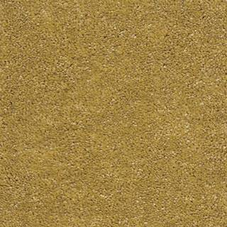 Kobercová krytina 4M Gerbera 50