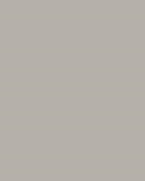 BAUMIT Silikatová omítka Baumit Silikattop 2,0 mm 25kg – odstín 0926