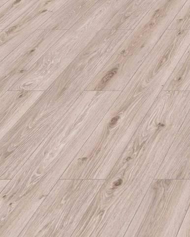 Laminátová podlaha Discovery Dub Argenta Béžový 10mm AC4 4V 47079