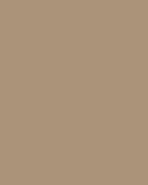 BAUMIT Silikatová omítka Baumit Silikattop 3,0 mm 25kg – odstín 0194