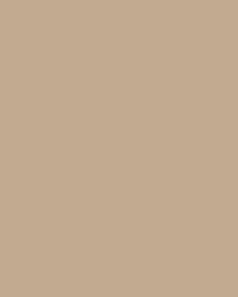 BAUMIT Silikatová omítka Baumit Silikattop 3,0 mm 25kg – odstín 0195