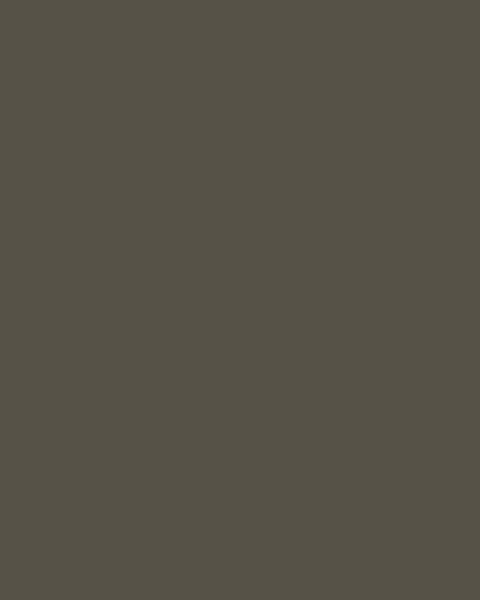 BAUMIT Silikatová omítka Baumit Silikattop 3,0 mm 25kg – odstín 0931