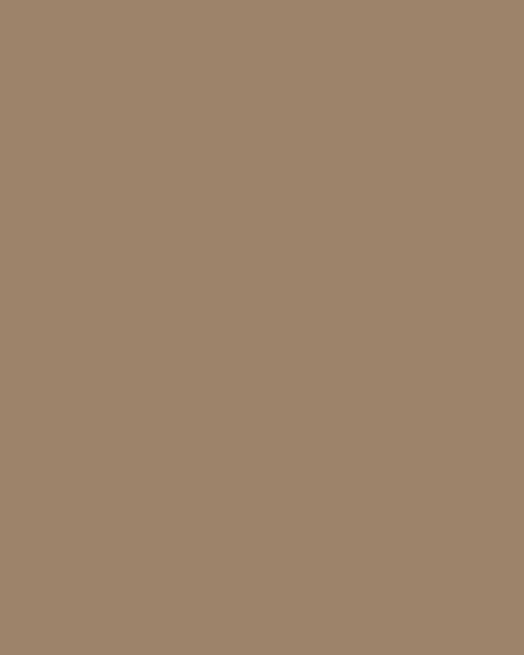 BAUMIT Silikonová omítka Baumit Silikontop 1,5 mm 25 kg – odstín 0193