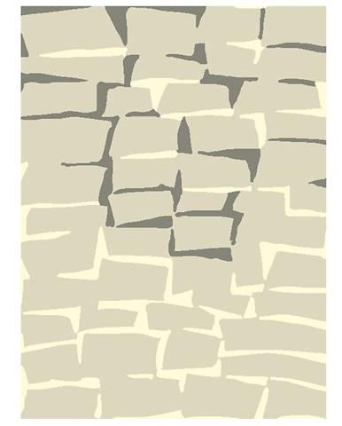 Koberec Contemporary 1,4/2,0 1501 S0244