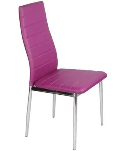 Židle Kris fialová tc-1002