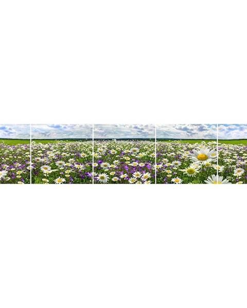 MERKURY MARKET Skleněný panel 60/300 Flowers-3 5-Elem