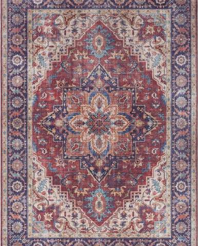 Červeno-fialový koberec Nouristan Anthea, 80 x 150 cm