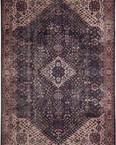 Hnědý koberec Floorita Bjdiar, 80 x 150 cm