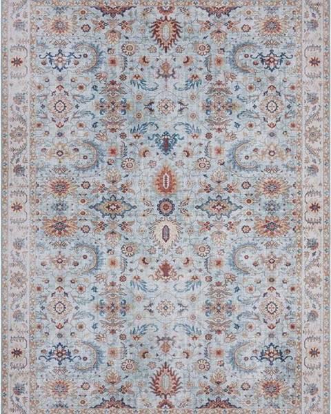 Nouristan Modro-béžový koberec Nouristan Vivana, 120 x 160 cm
