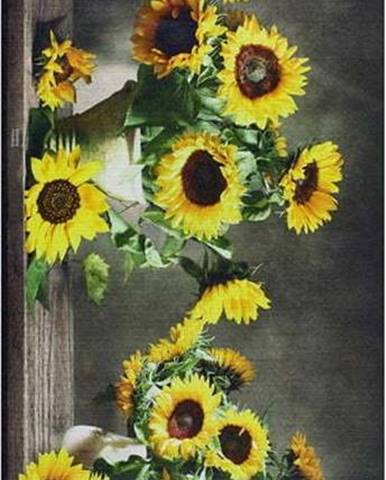Běhoun Universal Ricci Sunflowers, 52 x 100 cm