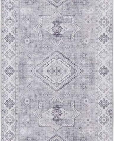 Světle šedý koberec Nouristan Gratia, 80 x 200 cm