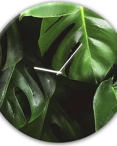 Nástěnné hodiny Styler Glassclock Monstera, ⌀ 30 cm