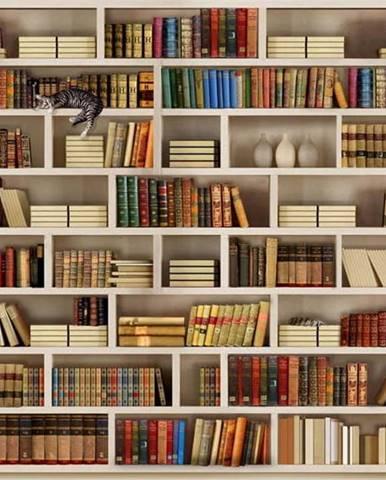 Velkoformátová tapeta Artgeist Home Library,400x280cm