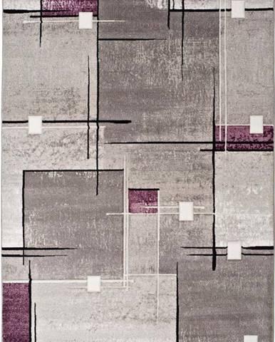 Šedo-fialový koberec Universal Detroit, 200x290cm