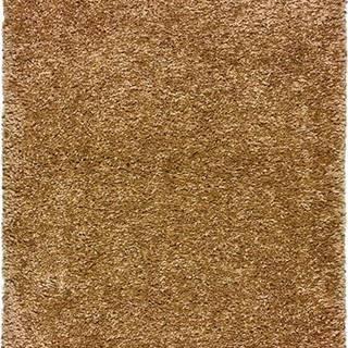Hnědý koberec Universal Aqua Liso, 160x230cm