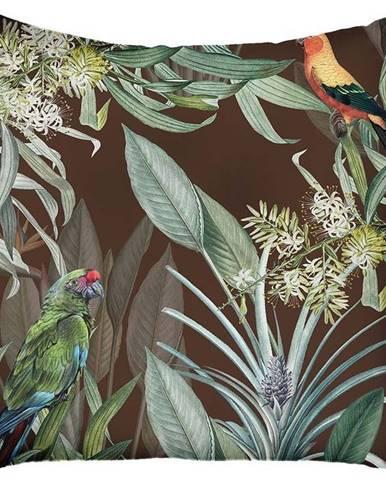 Hnědý povlak na polštář Mike & Co. NEW YORK Jungle Birds,43x43cm