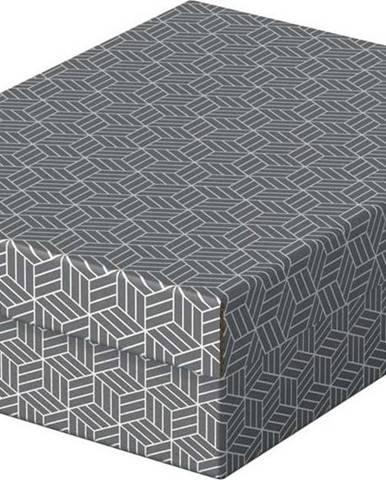 Sada 3 šedých úložných boxů Esselte Home,26,5x36cm