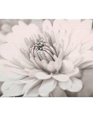 Dekor Garda flower 25/40