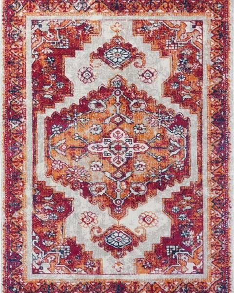 Nouristan Červený koberec Nouristan Daber, 120 x 170 cm