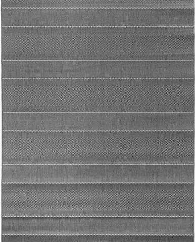Šedý koberec vhodný i na ven Hanse Home Sunshine, 200 x 290 cm